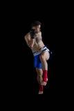 执行拳击姿态的拳击手 免版税库存图片