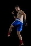 执行拳击姿态的拳击手 库存照片
