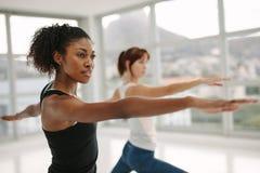 执行瑜伽的妇女在健身演播室 库存照片