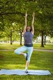 执行瑜伽的妇女在公园 免版税库存图片