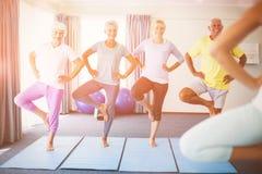 执行瑜伽的辅导员与前辈 库存图片