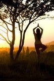 执行瑜伽 免版税库存图片