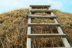 执行的干草堆梯子 图库摄影