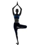 执行结构树姿势瑜伽的妇女 免版税库存照片