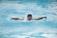 执行蝶泳的一位年轻适合游泳者 免版税库存图片