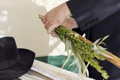 执行采取的指令的正统hasidic犹太人  库存照片