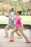 执行Tai凯爱的高级中国夫妇在公园 免版税库存图片