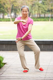 执行Tai凯爱的高级中国妇女在公园 图库摄影