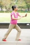 执行Tai凯爱的高级中国妇女在公园 库存照片