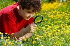 扩大化玻璃的孩子使用 免版税库存图片