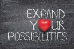扩展可能性心脏 免版税库存照片