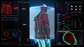 扫描在男性身体的血管在数字显示仪表板 X-射线视图 向量例证