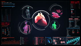 扫描血管,淋巴,心脏,在数字显示的循环系统 蓝色X-射线视图 股票视频