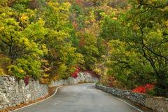 扭转路通过秋天山森林 免版税图库摄影