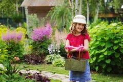 扮演小花匠和帮助在夏天庭院里的儿童女孩 免版税库存图片
