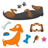 扮演狗字符滑稽的纯血统小狗可笑的愉快的哺乳动物的品种动物角色导航例证 皇族释放例证