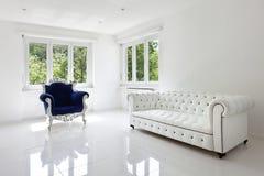 扶手椅子古典皮革沙发 库存图片