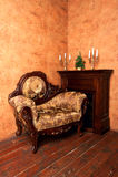 扶手椅子被塑造的内部豪华老 免版税库存图片