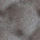 2017-02-02 - 批15 -无缝的样式2000年Px -毛皮003 免版税库存图片