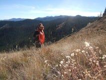寻找在科罗拉多山  免版税库存照片