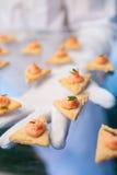 承办宴席(与多士和三文鱼酱的新鲜的可口盘) 免版税图库摄影