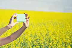 技术、暑假、假期和人概念-采取照片或selfie的妇女的手由在强奸领域的智能手机 库存图片