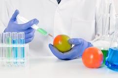 技术员使用一个注射器 水果和蔬菜的基因修改 免版税库存照片