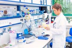 技术员在微生物学里 免版税图库摄影