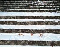 把城市报道的横向雪结构树都市冬天换下场 库存照片