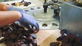 把巧克力糖放的无法认出的女工的手入包装机在糖果店工厂上 影视素材
