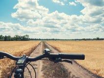 把手在黄色领域的道路的登山车特写镜头在乡下 库存图片