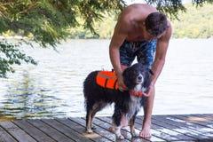 把救生衣放在狗上在湖 免版税库存图片
