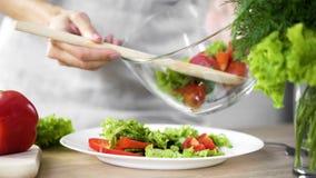 把新鲜的沙拉放的夫人在她的板材上,去吃午餐,健康吃 图库摄影