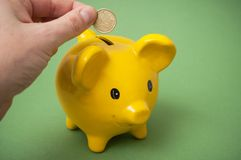 把欧元硬币放的人的手在黄色存钱罐中在绿色背景上 免版税库存图片
