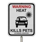 把狗留在的危险在停放的汽车 免版税库存图片