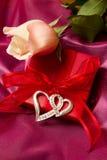 把礼品玫瑰装箱 库存照片
