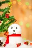 把礼品雪人装箱 库存图片