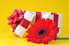 把花礼品被开张的红色装箱 库存照片