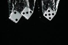 把落入水切成小方块 在黑色背景 免版税库存照片