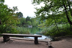 把调查换下场绿色湖和镇定的风景 库存照片