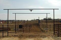 把马赶入围栏走 免版税图库摄影