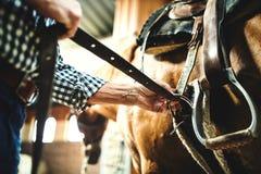 把马鞍放的一名老人的特写镜头在马上在槽枥 免版税图库摄影