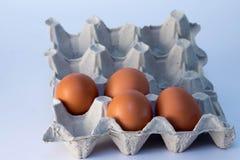 把鸡蛋装箱 图库摄影