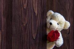 抓住在它的胳膊的逗人喜爱的玩具熊一朵红色玫瑰在木背景,拷贝空间 免版税库存图片