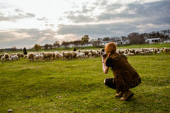 抓住有绵羊的牧羊人 免版税库存图片