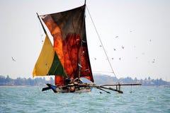 抓住检查他们的渔夫 免版税图库摄影
