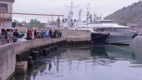 抓在码头的渔夫鱼 影视素材