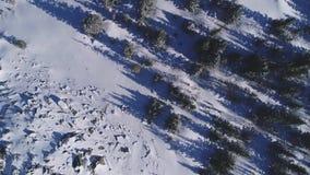 投下在积雪的山的树和石头鸟瞰图阴影 股票视频