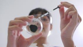 投下色的液体的医学研究科学家到培养皿 影视素材
