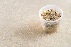 投入一个杯子谷物在米背景  免版税库存照片